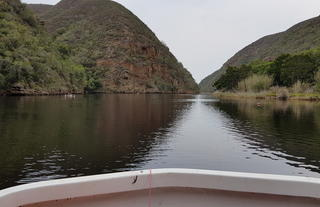 scenic sundowner cruise on the keurbooms river by Hog Hollow