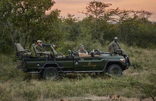 Game drives at Royal Malewane
