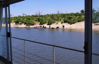 View from Zambezi Queen suite
